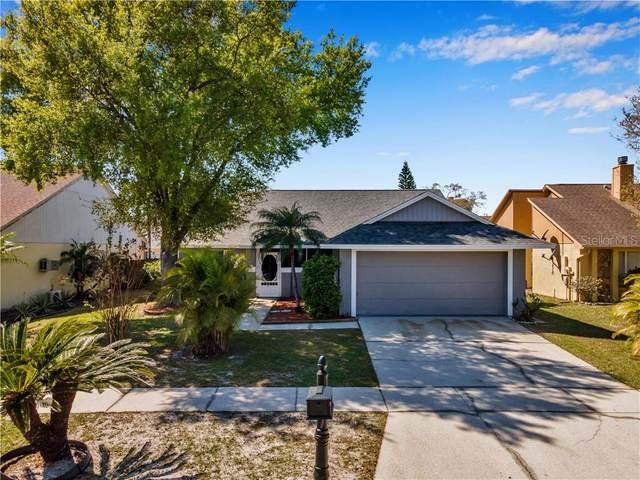 7110 Hollowell Drive, Tampa, FL 33634 (MLS #T3301721) :: Team Bohannon Keller Williams, Tampa Properties