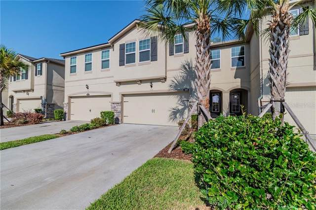 10310 Holstein Edge Place, Riverview, FL 33569 (MLS #T3301769) :: Everlane Realty