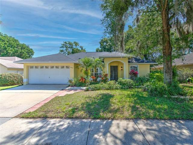 5910 Erhardt Drive, Riverview, FL 33578 (MLS #T3301792) :: Everlane Realty