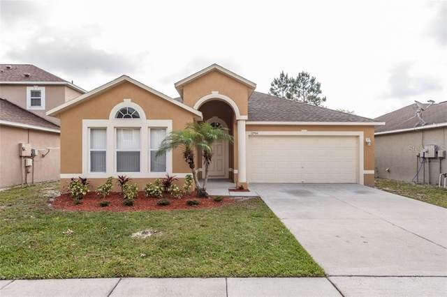 12904 Brookcrest Place, Riverview, FL 33578 (MLS #T3301800) :: Everlane Realty