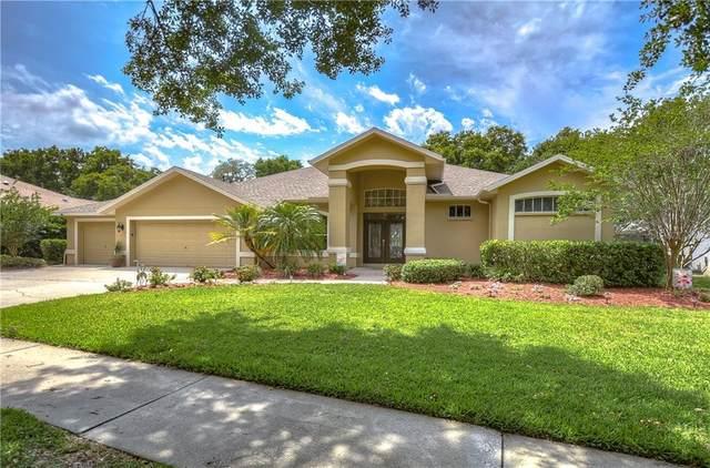 3705 Turkey Oak Drive, Valrico, FL 33596 (MLS #T3301820) :: Rabell Realty Group
