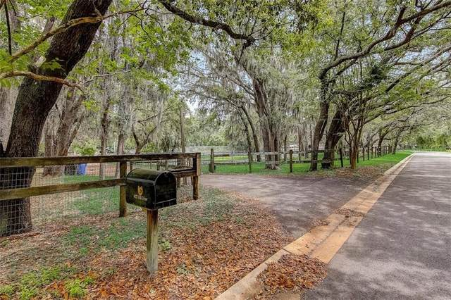 4427 Hill Drive, Valrico, FL 33596 (MLS #T3301825) :: GO Realty