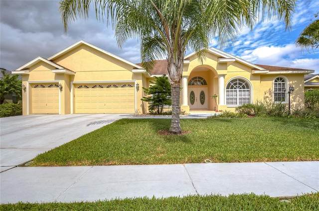 1043 Carriage Park Drive, Valrico, FL 33594 (MLS #T3301841) :: Kelli and Audrey at RE/MAX Tropical Sands