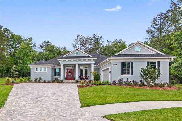 19597 Mossy Oak Court, Brooksville, FL 34601 (MLS #T3301914) :: Team Pepka