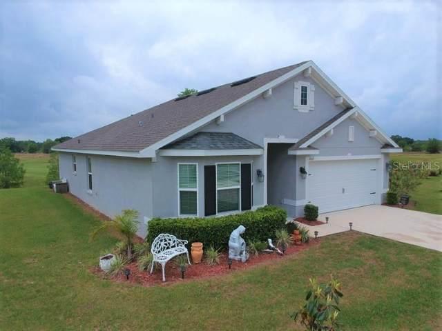 7062 Lamium Court, Brooksville, FL 34602 (MLS #T3301944) :: Everlane Realty