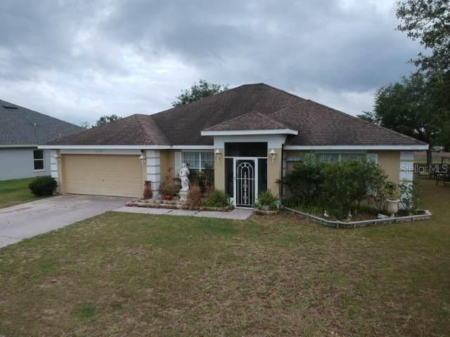 6790 Wirevine Drive, Brooksville, FL 34602 (MLS #T3301946) :: Everlane Realty