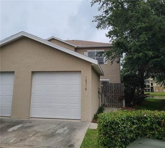 18516 Pebble Lake Court, Tampa, FL 33647 (MLS #T3301958) :: Team Bohannon Keller Williams, Tampa Properties
