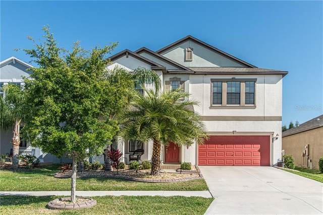 11014 Purple Martin Boulevard, Riverview, FL 33579 (MLS #T3301964) :: Rabell Realty Group
