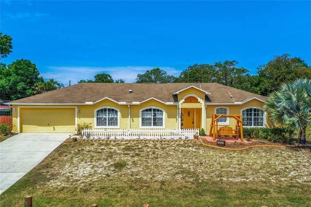 6448 Woodland Lane, New Port Richey, FL 34653 (MLS #T3301972) :: Team Borham at Keller Williams Realty