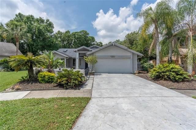 14663 Village Glen Circle, Tampa, FL 33618 (MLS #T3301989) :: Team Bohannon Keller Williams, Tampa Properties