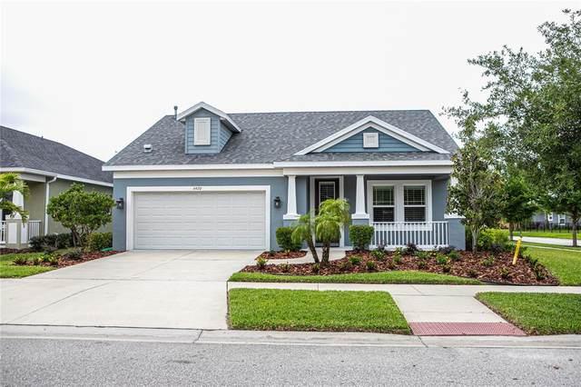 6420 Seasound Drive, Apollo Beach, FL 33572 (MLS #T3301990) :: Everlane Realty