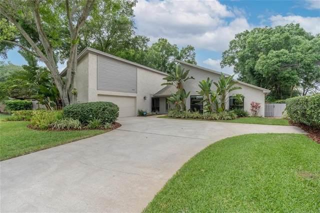 14204 Ashburn Place, Tampa, FL 33624 (MLS #T3302007) :: Team Bohannon Keller Williams, Tampa Properties