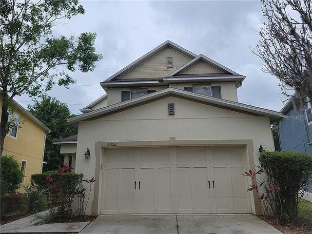 31652 Spoonflower Circle, Wesley Chapel, FL 33545 (MLS #T3302033) :: Team Bohannon Keller Williams, Tampa Properties