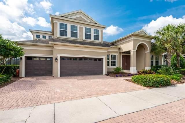 6002 Watercolor Drive, Lithia, FL 33547 (MLS #T3302042) :: Team Bohannon Keller Williams, Tampa Properties