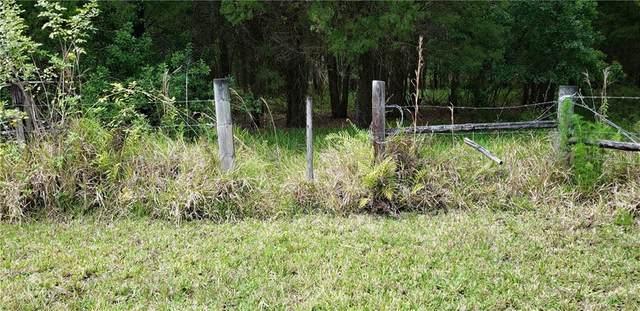 4539 Cobb Road, Land O Lakes, FL 34638 (MLS #T3302045) :: Vacasa Real Estate