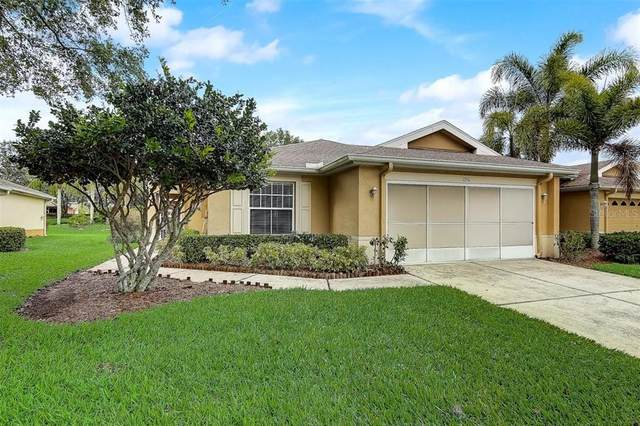 1250 Corinth Greens Drive #1250, Sun City Center, FL 33573 (MLS #T3302079) :: The Hesse Team