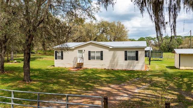 9161 Cr 674, Bushnell, FL 33513 (MLS #T3302104) :: Everlane Realty