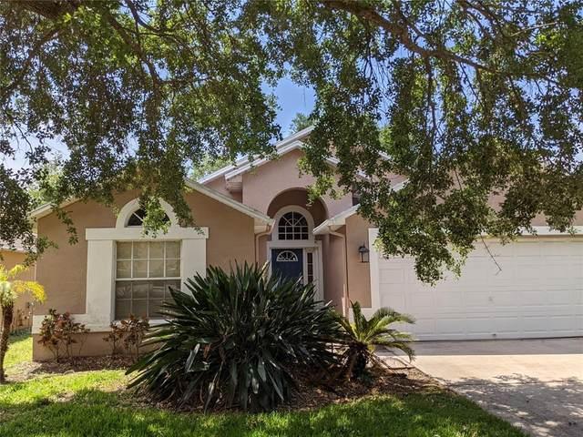 7107 Colony Pointe Drive, Riverview, FL 33578 (MLS #T3302119) :: Team Bohannon Keller Williams, Tampa Properties