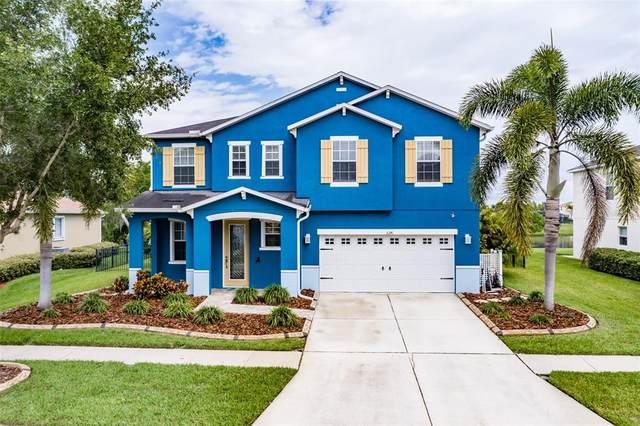 5241 Moon Shell Drive, Apollo Beach, FL 33572 (MLS #T3302123) :: Everlane Realty