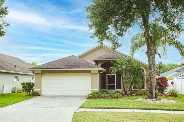 9317 Pontiac Drive, Tampa, FL 33626 (MLS #T3302132) :: Team Bohannon Keller Williams, Tampa Properties