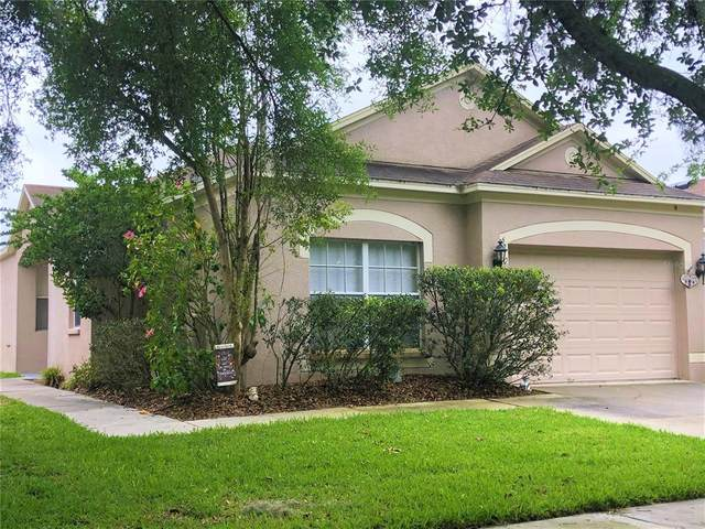 6210 Kiteridge Drive, Lithia, FL 33547 (MLS #T3302153) :: Positive Edge Real Estate