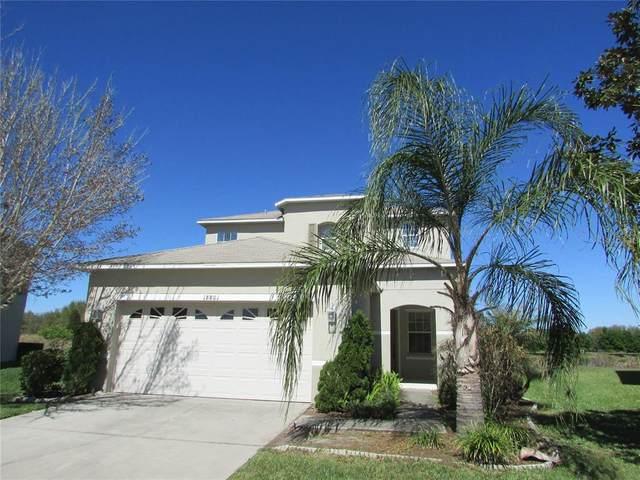 18801 Sunterra Drive, Land O Lakes, FL 34638 (MLS #T3302162) :: The Hesse Team