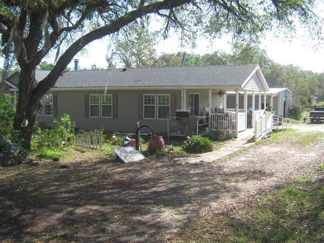 3765 SW 168TH Circle, Ocala, FL 34481 (MLS #T3302164) :: Vacasa Real Estate