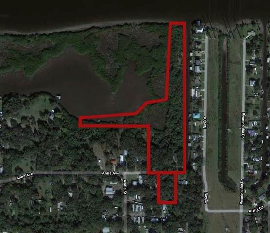7610 Anna Avenue, Gibsonton, FL 33534 (MLS #T3302190) :: The Light Team