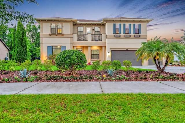 17914 Bramshot Place, Lutz, FL 33559 (MLS #T3302209) :: Premier Home Experts