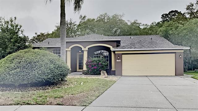 New Port Richey, FL 34654 :: Positive Edge Real Estate