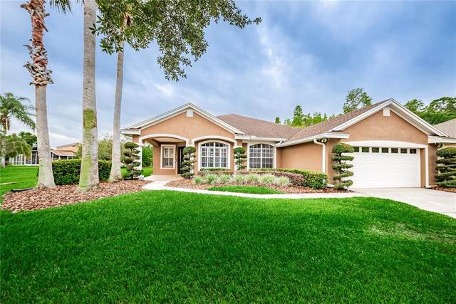 10320 Millport Drive, Tampa, FL 33626 (MLS #T3302257) :: Memory Hopkins Real Estate