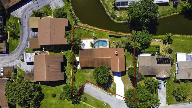 4043 Mariner Boulevard, New Port Richey, FL 34652 (MLS #T3302297) :: Team Borham at Keller Williams Realty