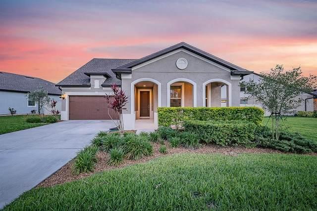 8191 Olive Brook Drive, Wesley Chapel, FL 33545 (MLS #T3302327) :: Positive Edge Real Estate