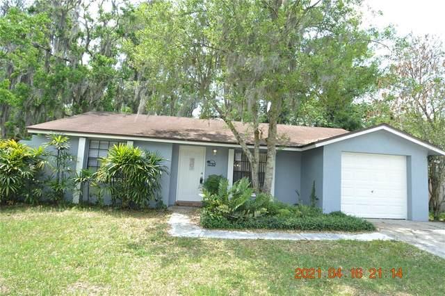 17707 Sunrise Drive, Lutz, FL 33549 (MLS #T3302329) :: Team Bohannon Keller Williams, Tampa Properties