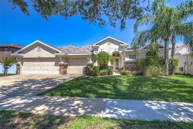 12801 Stanwyck Circle, Tampa, FL 33626 (MLS #T3302366) :: The Nathan Bangs Group