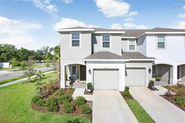 7135 Summer Holly Place, Riverview, FL 33578 (MLS #T3302372) :: Kelli and Audrey at RE/MAX Tropical Sands