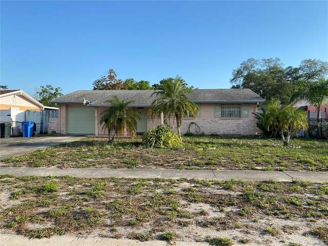 8306 Drycreek Drive, Tampa, FL 33615 (MLS #T3302420) :: Team Borham at Keller Williams Realty