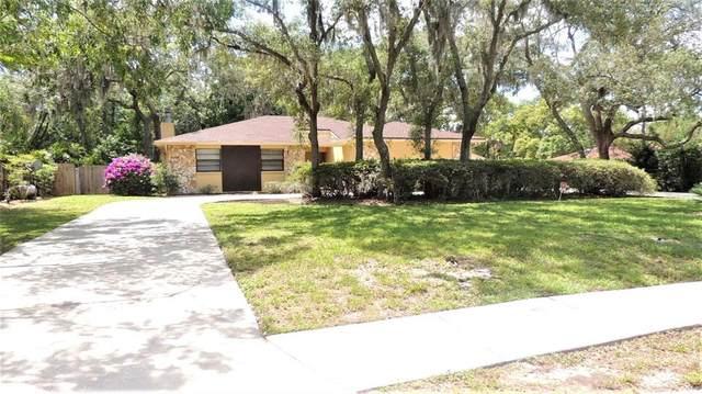13106 N 53RD Street, Temple Terrace, FL 33617 (MLS #T3302431) :: Team Borham at Keller Williams Realty