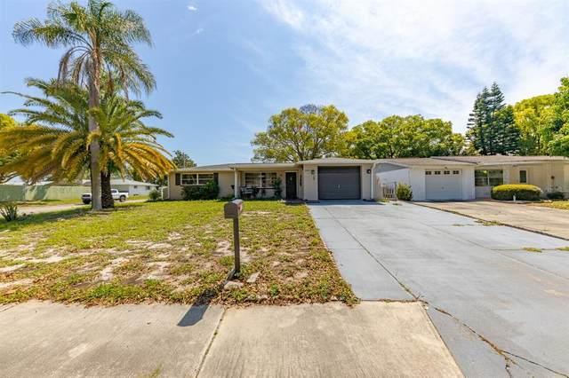 3820 Mynabird Drive, New Port Richey, FL 34652 (MLS #T3302472) :: Armel Real Estate
