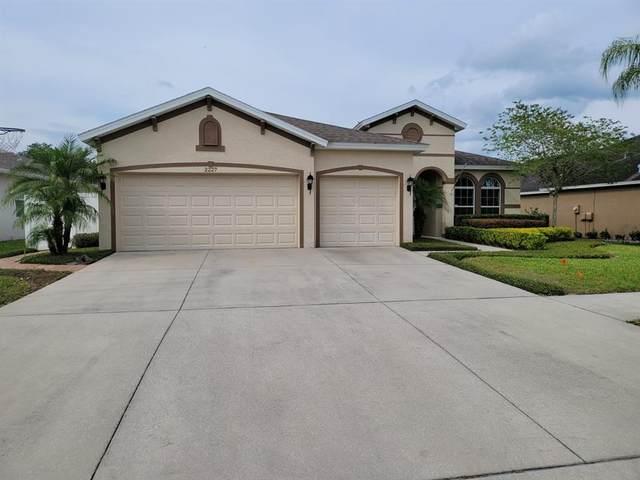 2227 Valterra Vista Way, Valrico, FL 33594 (MLS #T3302577) :: Team Bohannon Keller Williams, Tampa Properties