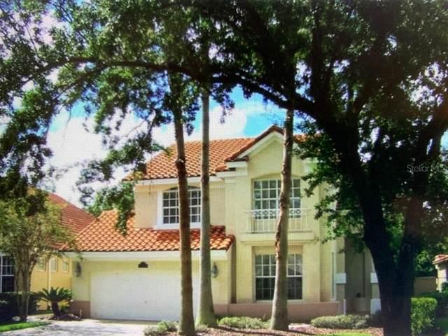 18807 Avenue Biarritz, Lutz, FL 33558 (MLS #T3302599) :: Premier Home Experts