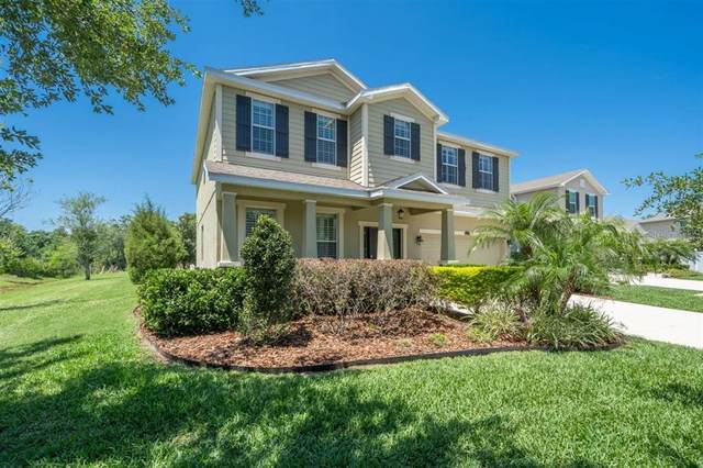 23908 San Giovanni Drive, Land O Lakes, FL 34639 (MLS #T3302602) :: The Lersch Group