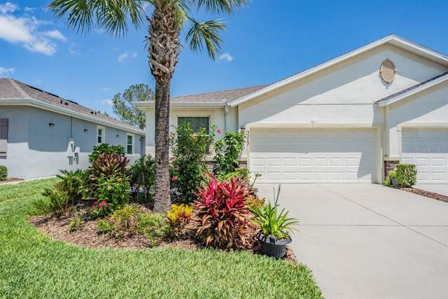33067 Windelstraw Drive, Wesley Chapel, FL 33545 (MLS #T3302626) :: The Hesse Team