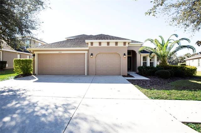 15651 Starling Water Drive, Lithia, FL 33547 (MLS #T3302641) :: The Robertson Real Estate Group