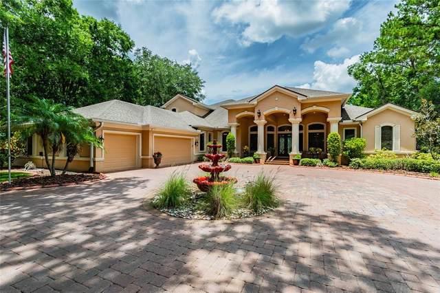 4119 Banjo Lake Road, Land O Lakes, FL 34639 (MLS #T3302648) :: Delgado Home Team at Keller Williams