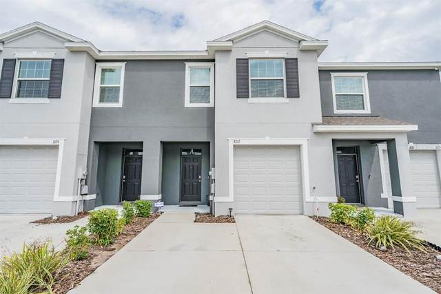 8717 Falling Blue Place, Riverview, FL 33578 (MLS #T3302796) :: Memory Hopkins Real Estate