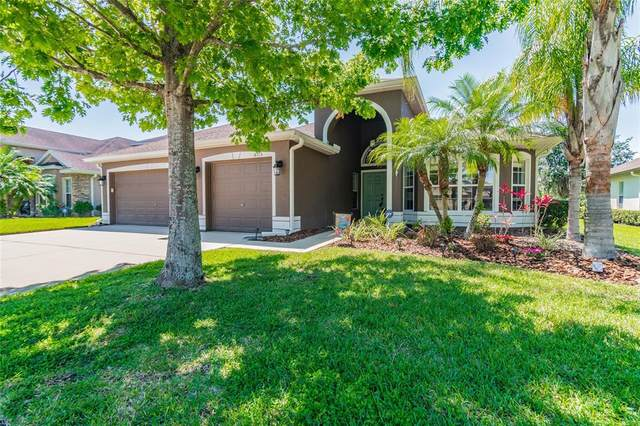 4715 Pointe O Woods Drive, Wesley Chapel, FL 33543 (MLS #T3302827) :: Heckler Realty