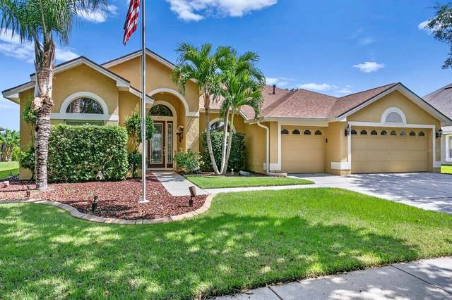 8312 Summer Grove Road, Tampa, FL 33647 (MLS #T3302929) :: The Nathan Bangs Group