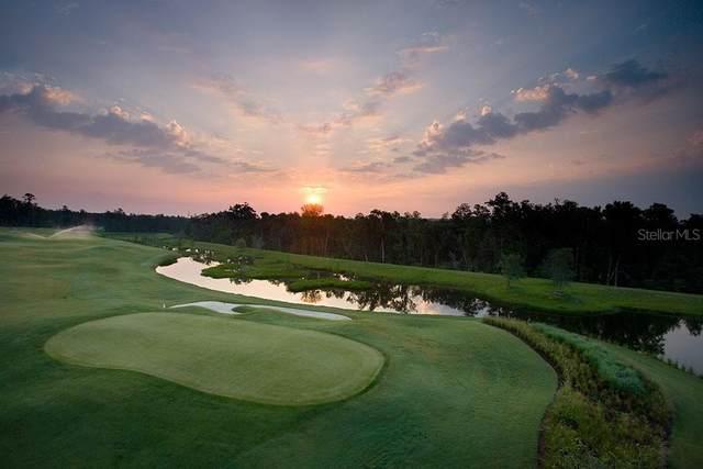 5225 Summit View Drive, Brooksville, FL 34601 (MLS #T3303213) :: Armel Real Estate