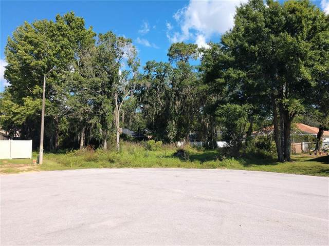 Six Point Court, Lakeland, FL 33811 (MLS #T3303232) :: Rabell Realty Group